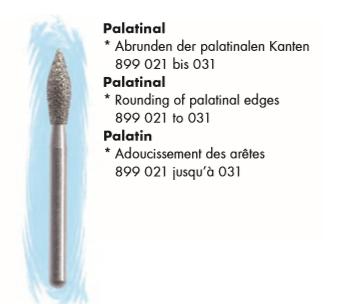 Palatinal