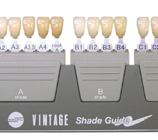 Vintage Shade Guide