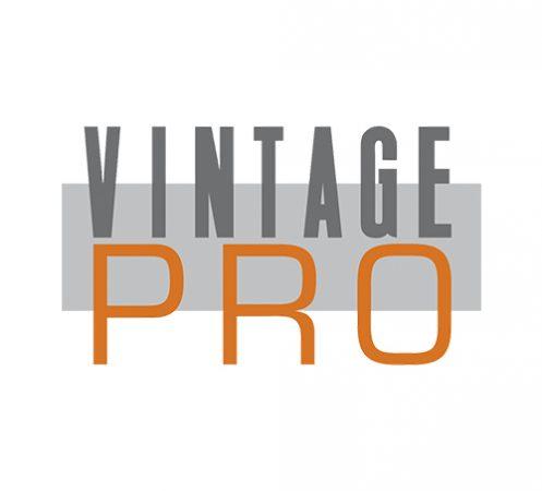 Shofu Vintage Pro Porcelain